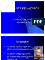 Bird Strike Hazards Sep 04