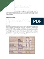 Laboratorio arqueometria Brasil.docx