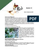 Boletín 13 de correo real de las Mariposas Monarca. Temporada 2010-2011