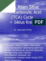 13. Siklus Krebs