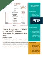 Guía de aprendizaje y escala de evaluación trabajo de formulación de caso electivas I 19.docx