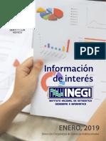 INEGI-Enero-2019.pdf