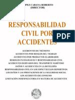 Responsabilidad Civil Por Accidentes - Roberto Lopez Cabana