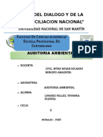 Auditoria Ambiental Trabajo Final
