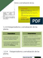 cultivos 1 unidad 2019 parte de una planta y fisiologia vegetal.pptx