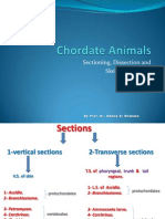 Chordate Animals - Sectioning, Dissection and Skeletal Elements