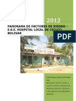 INFORME PANORAMA DE FACTORES DE RIESGO ESE HOSPITAL LOCAL CICUCO.docx