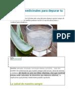 5 hierbas medicinales para depurar tu sangre.docx