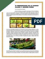 ACTIVIDADES PRODUCTIVAS DE LA CIUDAD DE SULLANA Y REGIÓN PIURA.docx