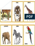 Cartões Animais Selvagens