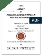 survey report.docx