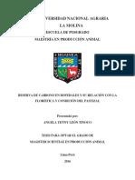 tesis pastos.pdf