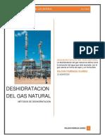 DESHIDRATACION DEL GAS NATURAL.docx