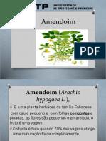 Amendoim 2