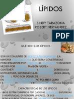 Expo Electiva (1)