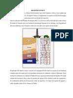REGISTRO DE DATOS.docx