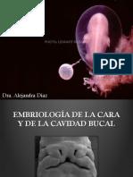 Embriologia2.1