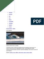 mapas de oceános.docx