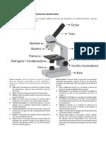 micrscopio.docx