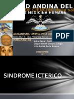 3 SINDROME ICTERICO