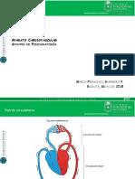 Determinación de Hipoclorito y Vitamina c Por Volumetría de Oxido
