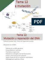 Tema 12 la mutación2015_5_18D20_38