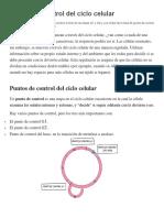 Puntos de control del ciclo.docx