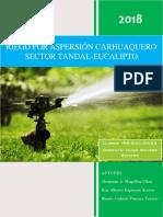Informe_de_Irrigaciones_ACABADO[1].pdf