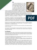 Que es el Carboncillo +            Las Técnicas    .docx