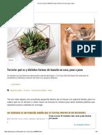 Terrario_ qué es y distintas formas de hacerlo en casa, paso a paso.pdf