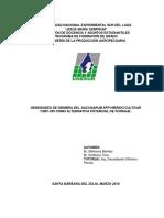 TDG Cultivar CR87-339 Melianny&Estefany..docx