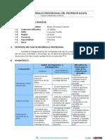 PLAN DE DESARROLLO PROFESIONAL DEL PROFESOR NOVEL.docx