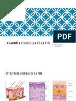 Anatomia y Fisiologia de La Piel Mas Trabajod Ppt