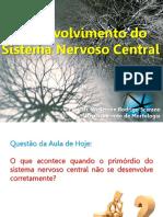 snc-ld desenvolvimento sistema nervoso.pdf