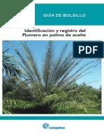 Guia ident plumero(2).pdf