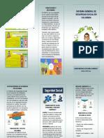 folleto SGSSC