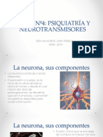 4ª Neuronas y neurotransmisores.ppt