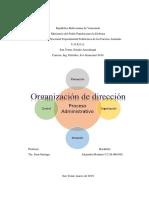 Trabajo de DIN VIII Organización de dirección Alejandro Romero.docx