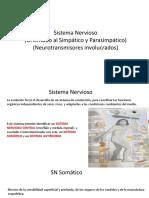 (para)simpatico.pdf