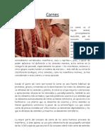 informe de carnes.docx