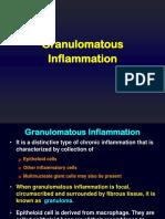 Granulomatous Inflammation