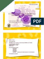 APRES2014 PRÁTICA1 CASOS .pdf