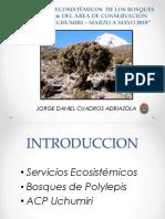 Servicios Ecosistemicos Polylepis- Blgo Jorge Cuadros.pdf