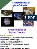 005-Phylum Cnidaria.ppt