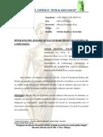 CESAR PACHON- ALEGATOS - ALEGATOS ALIMENTOS.docx