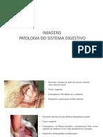 Patologias Do Sistema Digestório