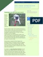 Reference -- Alberta -- Edmonton -- 2010 02 22 -- Pesticide Free Edmonton -- Dogs