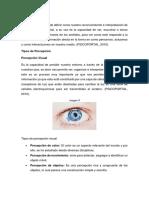 Tipos-de-percepción.docx