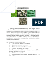 Moringa Oleifera.docx