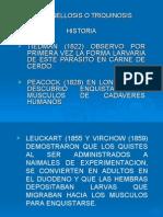 CICLO BIOLOGICO DE LA TRIQUINOSIS
